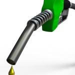 Alternative-Energy-Sources-Cow-Urine